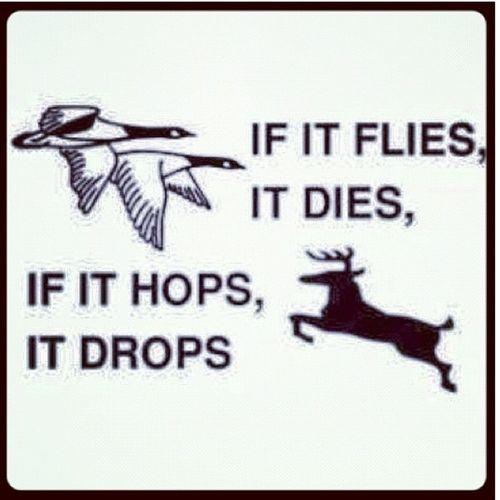 If It Flys It Dies If It Hops It Drops