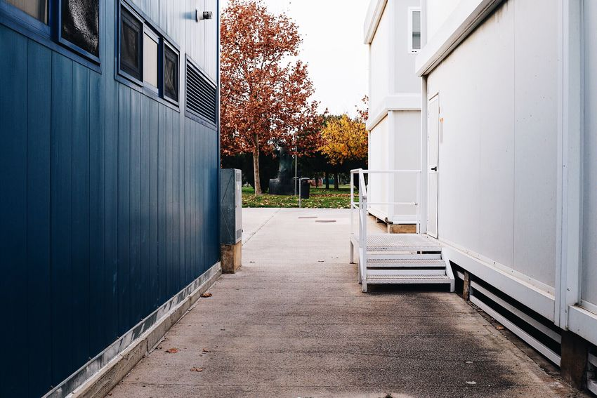 Alley Alleyway Back Alley Narrow Narrow Street Street Streetphotography Architecture Colors Blue White Trees Autumn Autumn Colors Exploring New Ground Freelance Life Perspectives Houses Houses And Windows Afternoon Walk Design Outdoors Minimalism Simplicity Empty Places