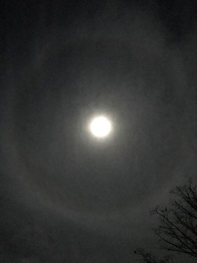 Ring Around The Moon Moon Ring Full Moon Nightphotography Night Sky Scenics Tranquility Moon Tranquil Scene Moon Moon Lover Moonlight Clouds And Sky Nightlife Beauty In Nature Bright Night Beautiful Moon Lit Clouds Night Skys