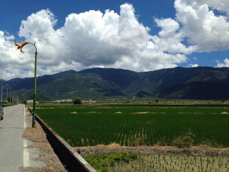 Landscape 往赤柯山的路上 Mountains