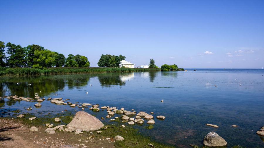 Peterhof Water