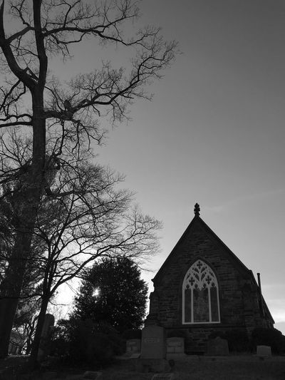 Bnw Blackandwhite Photography Arch Tree Spirituality Place Of Worship Built Structure Cross Architecture Sky Building Exterior