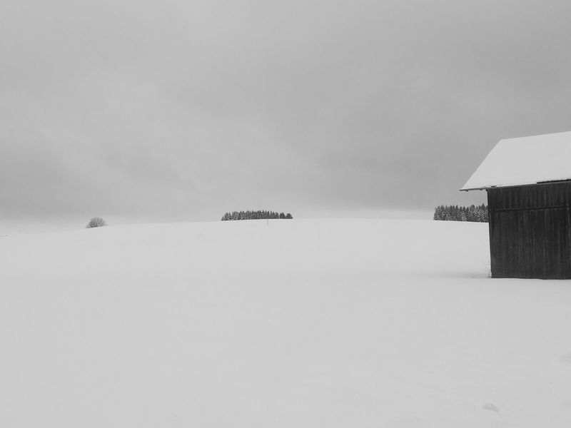 Winter lines Schwarzweißfotografie Blackandwhite Photography Lines And Shapes Barns Snow Winter Allgäu Alps Bavarian Alps Mountains Built Structure Sky Nature Landscape Day Architecture