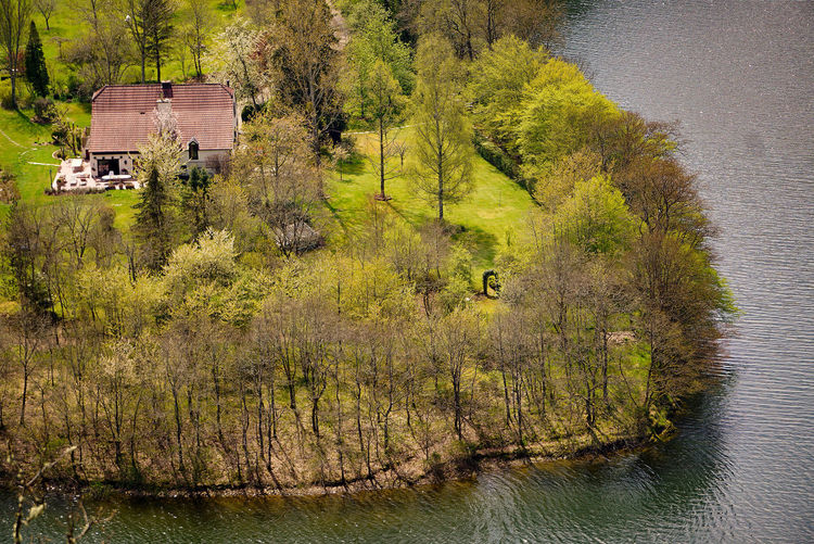 High angle view of plants by lake