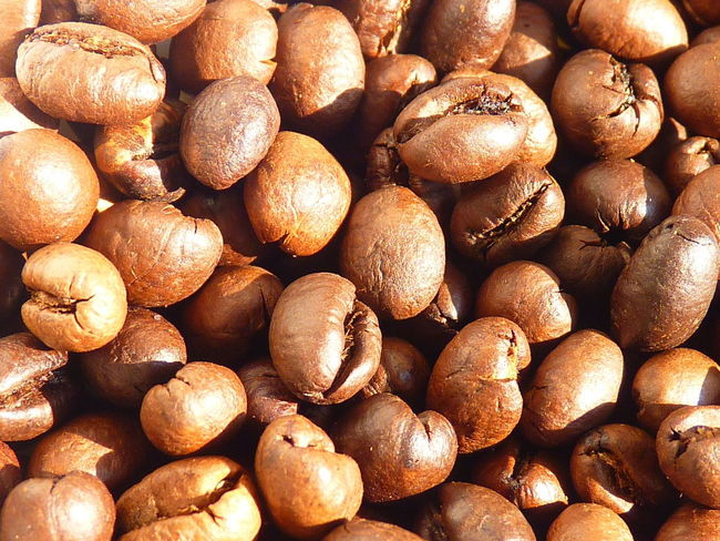coffee cherry,coffee,Peaberry,caracoli Coffee Abundance Aleq Backgrounds Brown Caracoli Close-up Coffee Cherry Detail Food Food And Drink Freshness Fruit Full Frame Group Healthy Eating Indoors  Large Group Of Objects No People Nut Nut - Food Peaberry Still Life Textured  Wellbeing