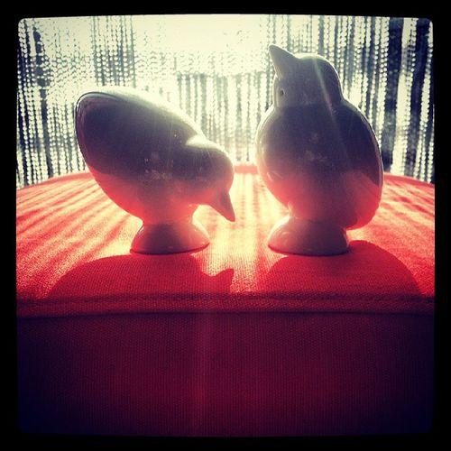 Caroljacobs Po Birds Ceramic ceramics saltpot saltandpepperpot saltandpepperpots pepperpot pepperpots cruit cruitset