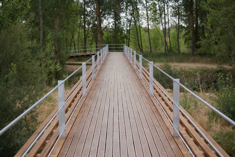 Boardwalk Leading Towards Trees