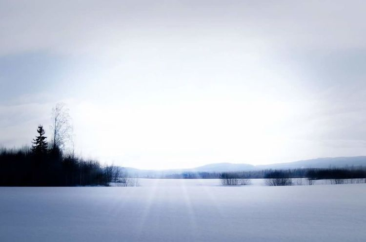 Landscape Beauty In Nature Nature Outdoors Tree Snow Winter Cold Temperature Sky Frozen No People
