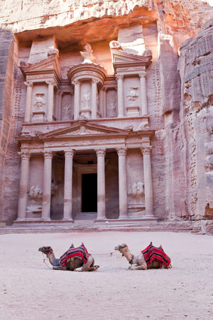 Camels in front of the Treasury in Petra, Jordan Travel Ancient Ancient Civilization Arab Architecture Building Exterior Built Structure Camels Day Destination Famous Place History Lost City Mammal Nabatean Old Ruin Outdoors Pillars Place Of Worship Real People Rocks Rosy Spirituality Statue Travel Destinations