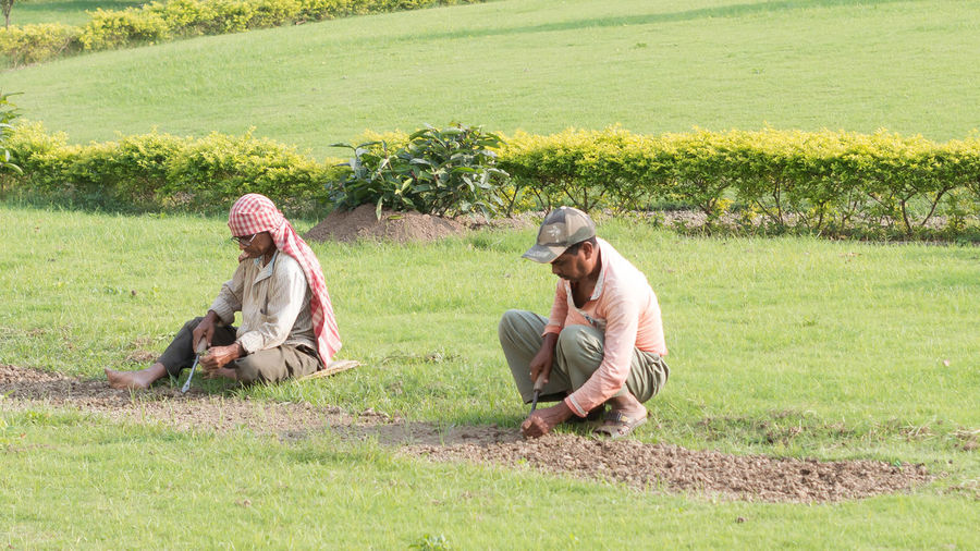 Rear view of people sitting on field