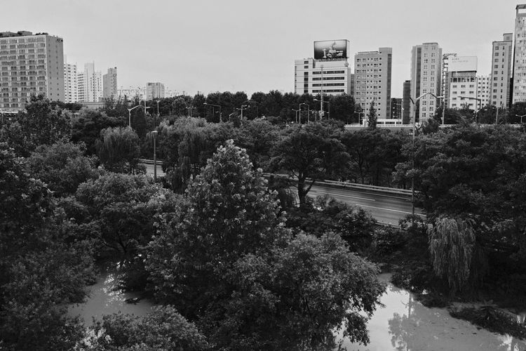 High angle view of trees and buildings against sky