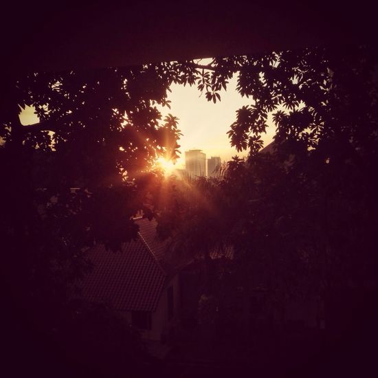 Morning sunshine over the window Hello World EyeEm Best Shots EyeEm Best Shots - Sunsets + Sunrise EyeEm Indonesia