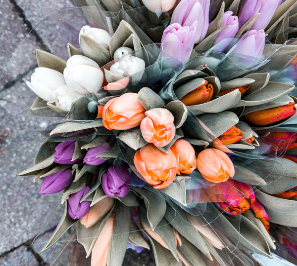 tulips on the pavement Springtime Spring Flowers For Sale Flower Head Flower Bouquet Petal Close-up Bunch Of Flowers Flower Arrangement Flower Market Flower Shop Tulip Florist In Bloom Pale Pink Plant Life Valentine Day - Holiday