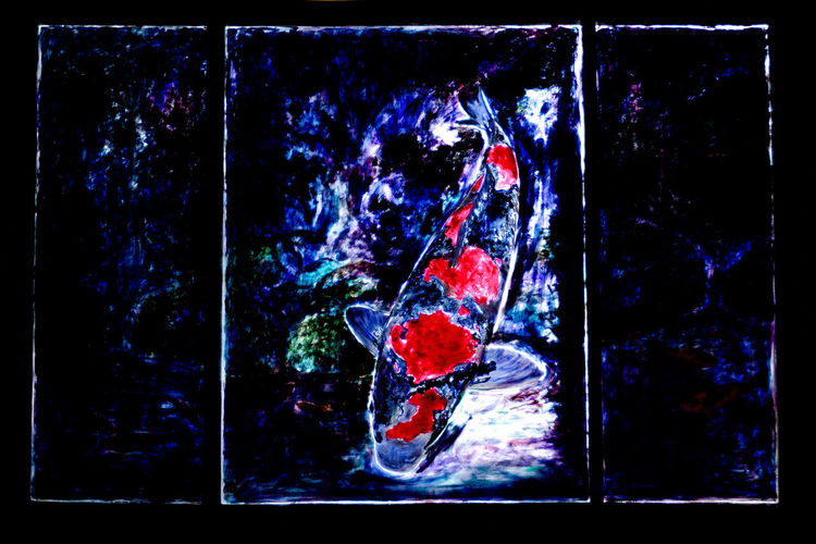 Animal Animal Wildlife Auto Post Production Filter Black Background Close-up Composite Image Creativity Dark Digital Composite Full Length Nature Night No People Outdoors Red Studio Shot Transfer Print Transparent
