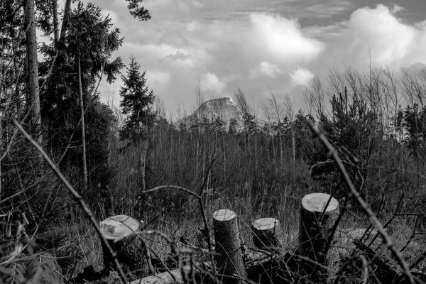 Alps Bavaria Bavarian Alps Snowcapped Mountain BW_photography Bw Winter Moorland Moored Mystic Dangerous