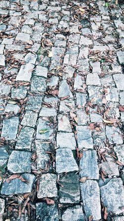 Full Frame Folhas Secas  Folhas Que Caem Folhas Caídas Backgrounds Day Outdoors Pattern Cobblestone Textured  Nature Stone Tile Close-up No People