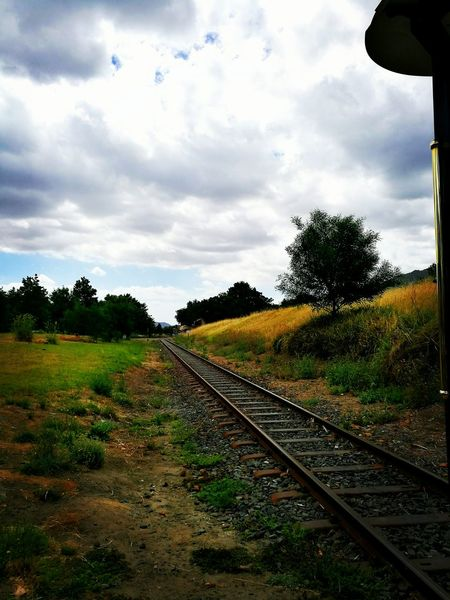 Traveling Home For The Holidays Railroad Track Rail Transportation The Way Forward Nature No People Outdoors Cloud - Sky Tree Sky