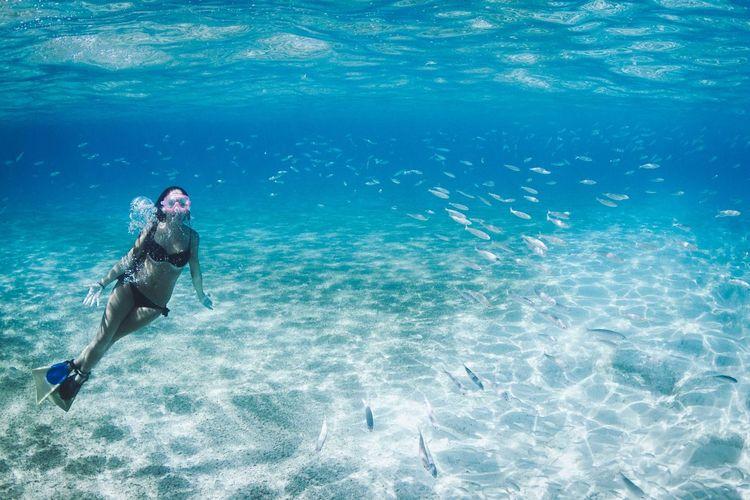 Atlantic Ocean Beach Bikini Blue Canary Islands Diving Fish Girl Girlfriend La Graciosa Lanzarote Life Lifestyles Love Pacwaves Sea Sea Life Snorkeling Summer UnderSea Underwater Underwater Photography Water Water Photography Fresh On Market April 2016