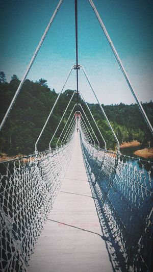 桥☀️ Enjoying Life