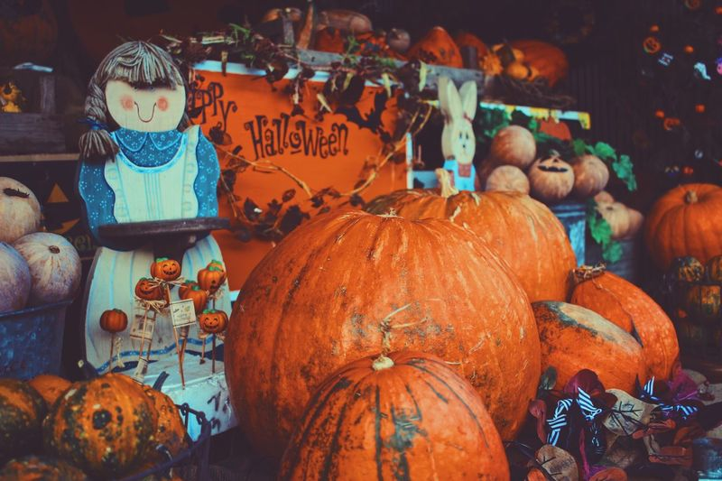 Pumpkins for Halloween celebrations! Pumpkin Patch Halloween Pumpkins Orange Photography Retail  Large Group Of Objects For Sale Market Food And Drink Choice Pumpkin Variation Market Stall Art And Craft No People Abundance Representation Business Food Day Animal Representation Creativity Small Business Text