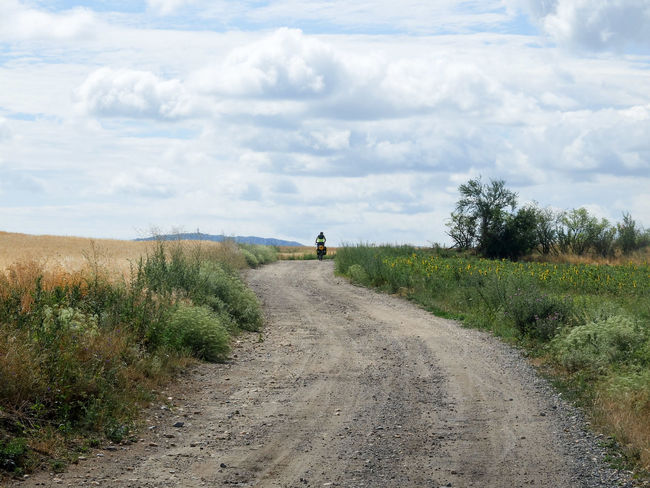 Adventure By Bike Bike Trip Travel Photography Animal Themes Beauty In Nature Bike Packing Bike Touring Cloud - Sky Day Field Grass Growth Landscape Mammal Nature No People Outdoors Plant Road Scenics Sky The Way Forward Tranquil Scene Tranquility Tree Wilderness Adventure