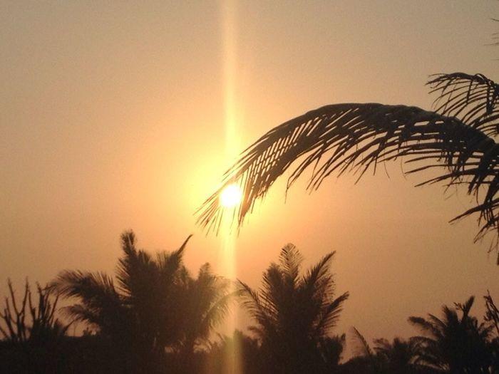 No Edit/no Filter Tadaa Community Sun Sunset EyeEm Best Shots Sun_collection Photography Taking Photos