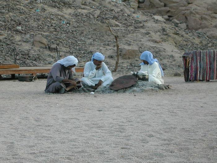 Taking Photos Art Civil Desert africa egipt