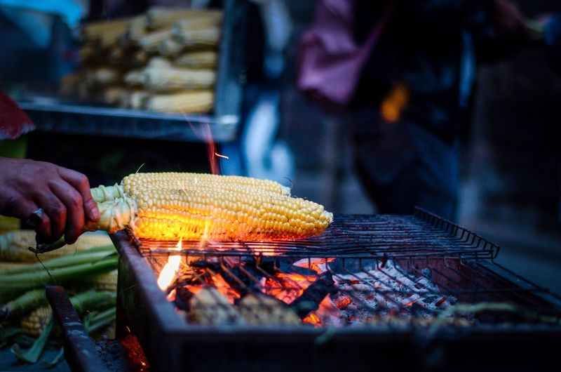 Person roasting corns on barbecue grill