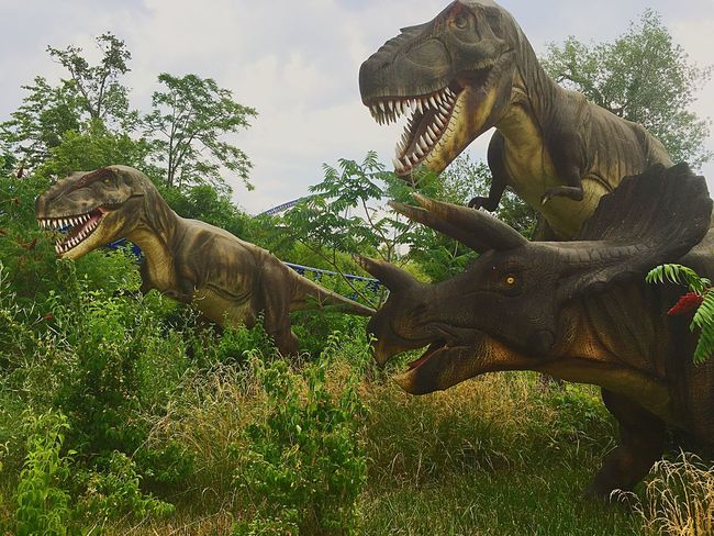 Dinosaurs Alive in Cedar Point - Sandusky, Ohio - USA Dinosaur Alive Cedar Point Check This Out Taking Photos Holidays ☀ Family❤ Dinosaur Beauitful Day Love These Moments Memories Adventerous Being Crazy(: Good Times Love ♥