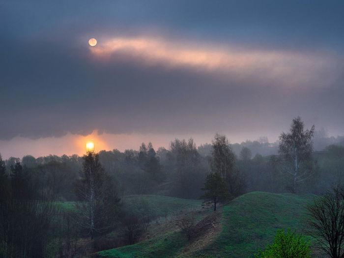Russia, Oka river, fog, early morning Russia Beauty In Nature Cloud - Sky Environment Field Fog Foggy Foggy Morning Hazy  Idyllic Land Landscape Nature No People Non-urban Scene Oka River Plant Scenics - Nature Sky Sun Sunset Tranquil Scene Tranquility Tree