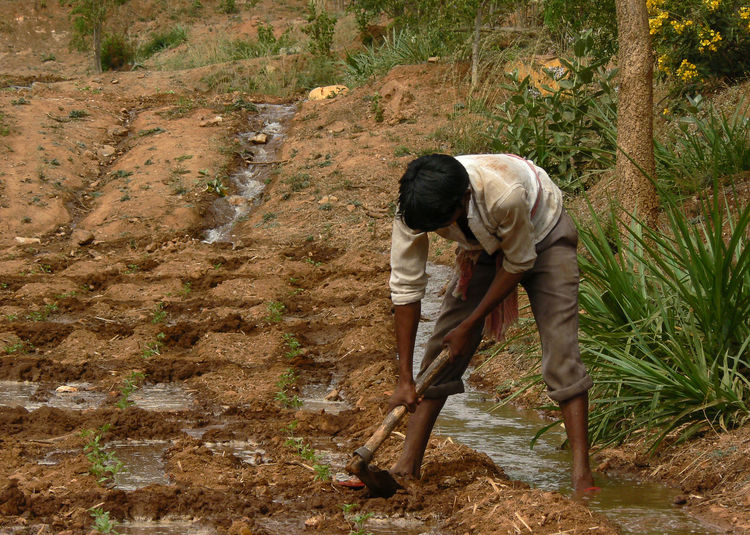 Full length of farmer working on agricultural field