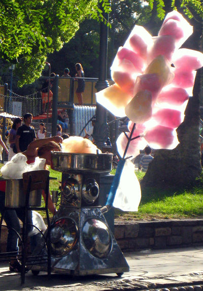 Cotton Candy seller O'Higgins park Colours Downtown Park Small Business Cotton Candy Leisure Activity Outdoors Real People Steel Machine