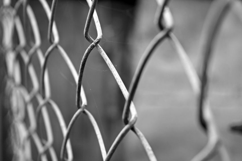 Backgrounds Black And White Blackandwhite Chainlink Fence Close-up Day Design Detail Fence Focus On Foreground Full Frame Mesh Wire Fence Metallic Monochrome Nature No People Protection Repetition Safety Security Selective Focus