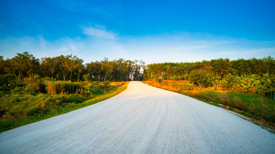 Photos of unfinished roads Around the dokkay reservoir Tree Road The Way Forward Direction Sky Nature Tranquility Tranquil Scene Beauty In Nature Outdoors