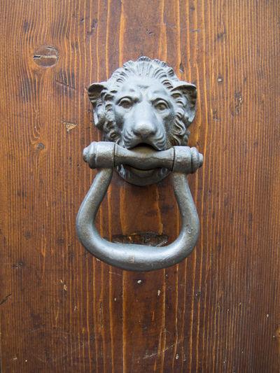 Animal Representation Close-up Day Door Door Knocker Door Knocker Doorknob HEAD Italy Lion Lion - Feline Lion Head No People Outdoors Wood - Material