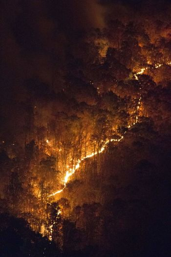 Fire in the valley Nature Illuminated No People Beauty In Nature Scenics Outdoors Tree Abstract Fire Fire In The Valley Looking Down From Above On The Mountain Natural Phenomenon Technology North Carolina Fire Below