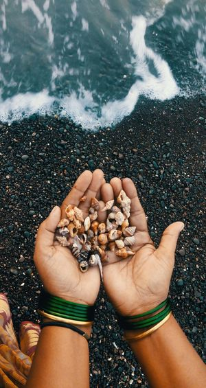 High angle view of hand holding pebbles at beach
