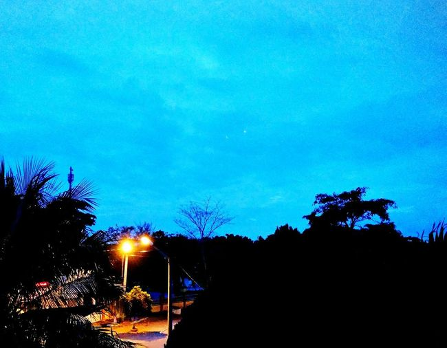 Night Taman Siswa Night Blue Streetphotography Niht View Tree Illuminated Silhouette Blue Sky