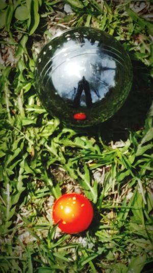 Petanque Green Color Grass Close-up Outdoors Freshness Nature Day Pétanque Balls Cochonnet Ptit Cochon