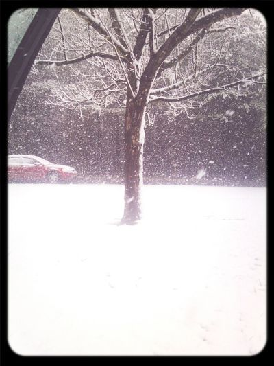 My Snow Day ^_^