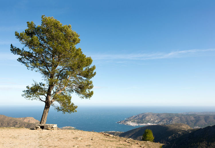 Costa Brava Country Girona Nature Rural SPAIN Beauty In Nature Blue Day Landscape Landsccape Mountain Nature No People Outdoors Scenics Sky Tranquil Scene Tranquility Tree Water