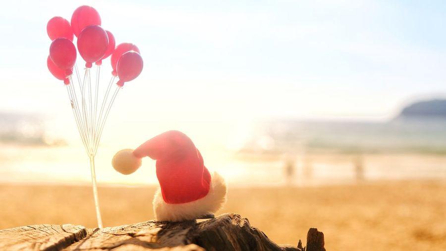 Sea Christmas