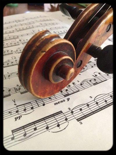 Music Violin Geige Classicalmusic