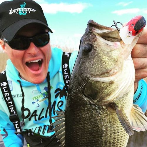 They love crankbait in pre spawn! Bassfishing Livingstonlures Fishing Crankbait Prespawn Prespawnbass Sky Beautiful