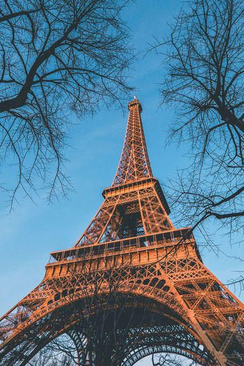 Paris at night! Architecture Built Structure Low Angle View Tree Tower Bare Tree Sky Tourism Travel Destinations Tall - High Nature Building Exterior The Past Branch City History Plant Travel No People Outdoors Spire  Eiffel Tower Framed