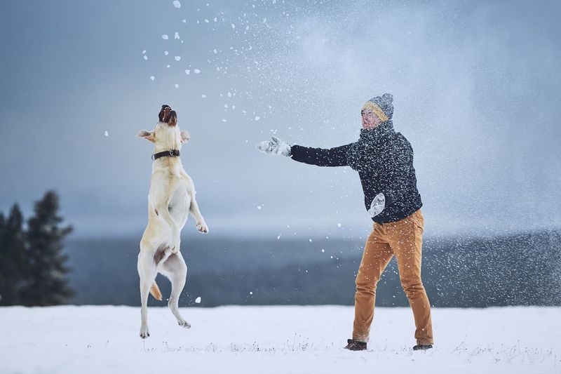 Man playing with dog on field during snowfall