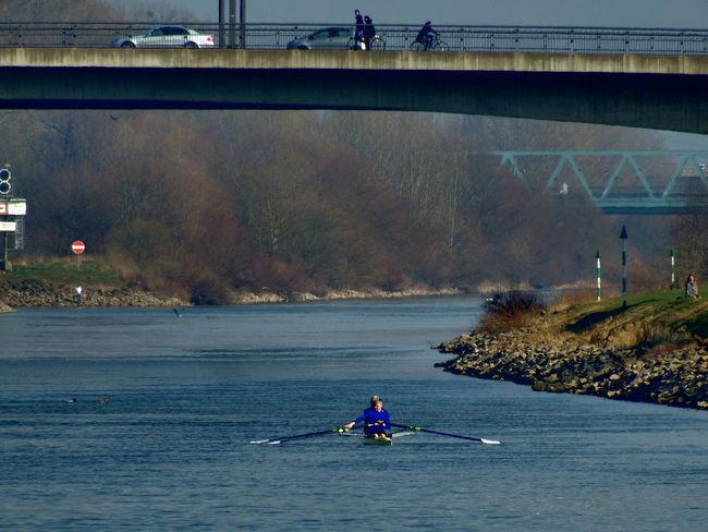 Wassersport Bridge Brücke Day Leisure Activity Lifestyles Nature Neckar Outdoors River Ruderer Water