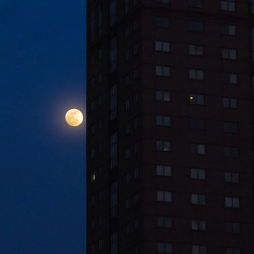 waiting on that Bloodmoon beginning tonight at 2am in NYC Lunareclipse Tetrad endoftheworld brooklyn