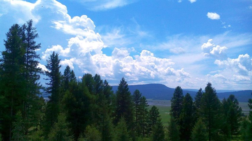 Sunset #sun #clouds #skylovers #sky #nature Beautifulinnature Naturalbeauty Photography Landscape [ Forest Nature Naturelovers Nuture Sky летние каникулы Forest Buryatia, Russia, Ulan-Ude Russian Nature