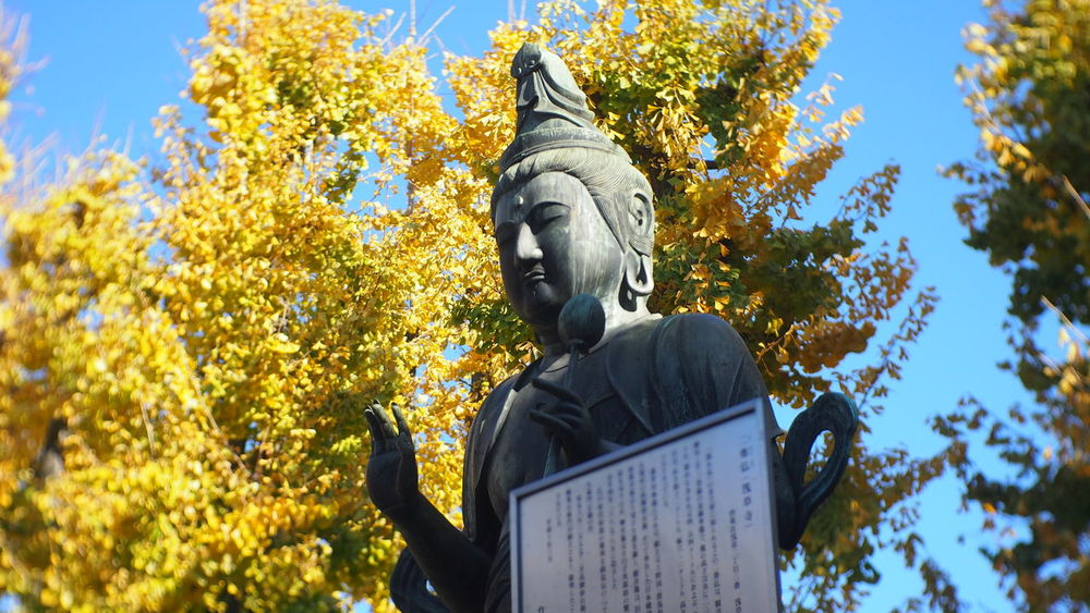 Asakusa Buddha Image Day December Fall Japan Noon Religion Senjoji Temple Temple
